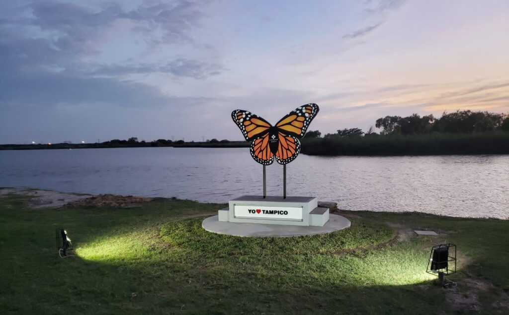 Mariposa Monarca Fray Andres de Olmos Tampico